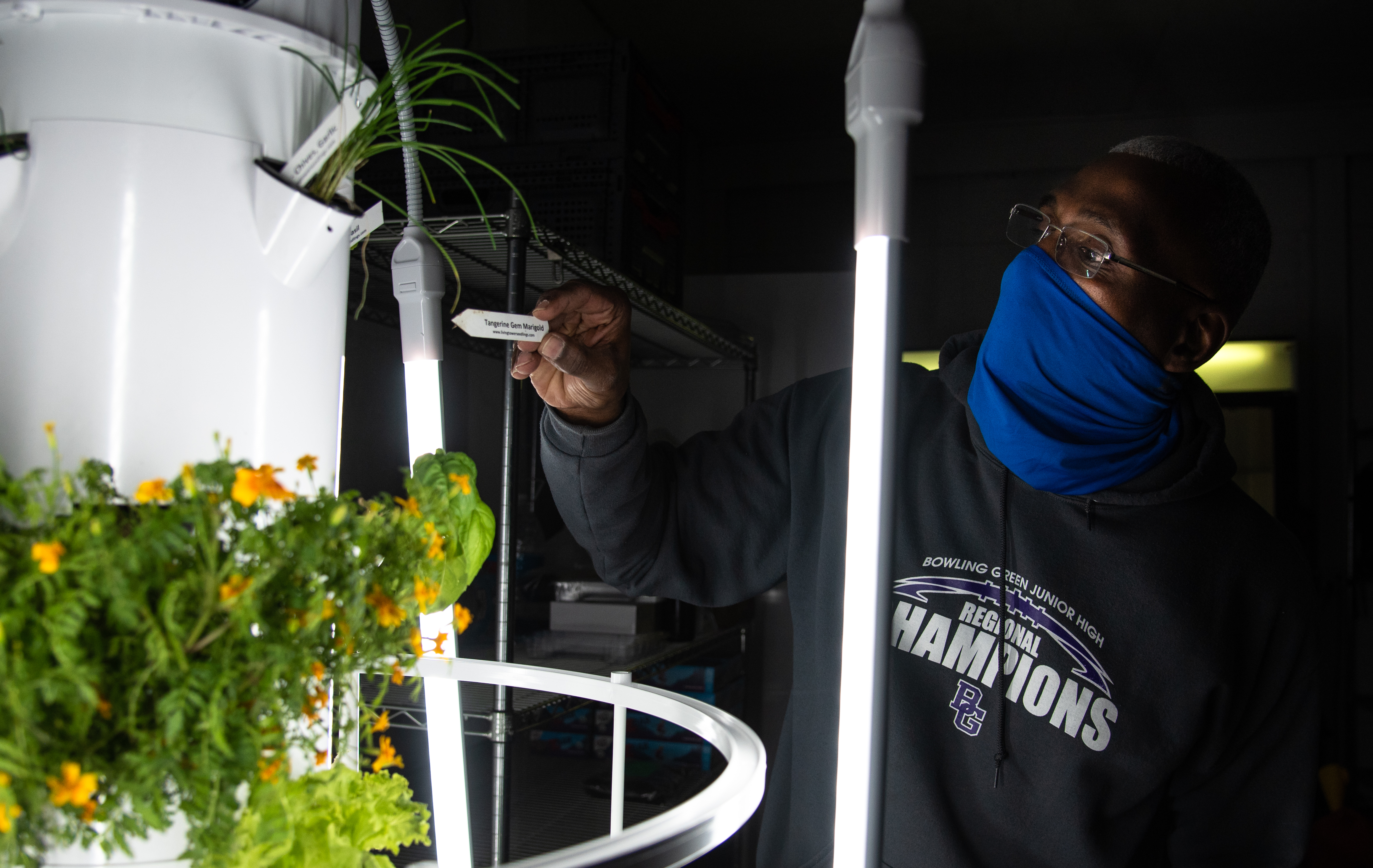 Danny Carothers checks on herbs growing in the stand-up hydroponic garden that was donated to the Housing Authority in Bowling Green to supplement the groceries available on the Mobile Grocery Bus.